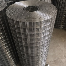 cheap galvanized welded wire mesh used for rabbit/bird cage
