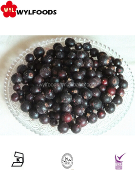 Market price wholesale bulk IQF Frozen Black currant for jam