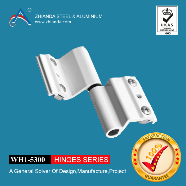 Oem&Odm Aluminum Alloy Key Handle Swing And Hinged Windows