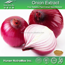 Organic Free Sample Onion Extract / Dried Onion Powder/ Onion Extract Quercetin