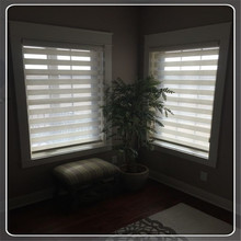 Self-adhesive Pleated Paper Shades Shade Awning Shade Accessories Zebra Blinds