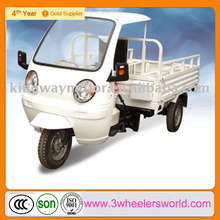 Chongqing Manufactor 3Wheel 250cc Motorized Cargo Motorcycle for Sale