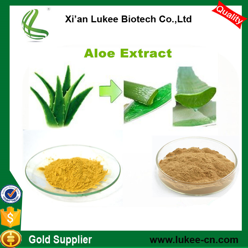 Top quality Natural Aloe vera Extract powder, Natura lAloe vera FD Powder 200:1, Pure Rhein 98%/Aloin 10%