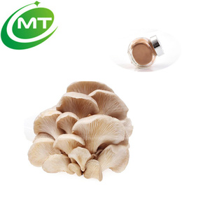 IOS cert Natural Oyster Mushroom Extract Powder with free sample