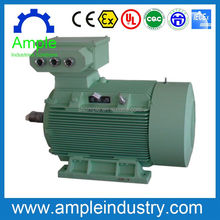 Hot sale electric motor 2500kw