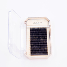 Pre-made fans lashes silk hair eyelash extensions for sale