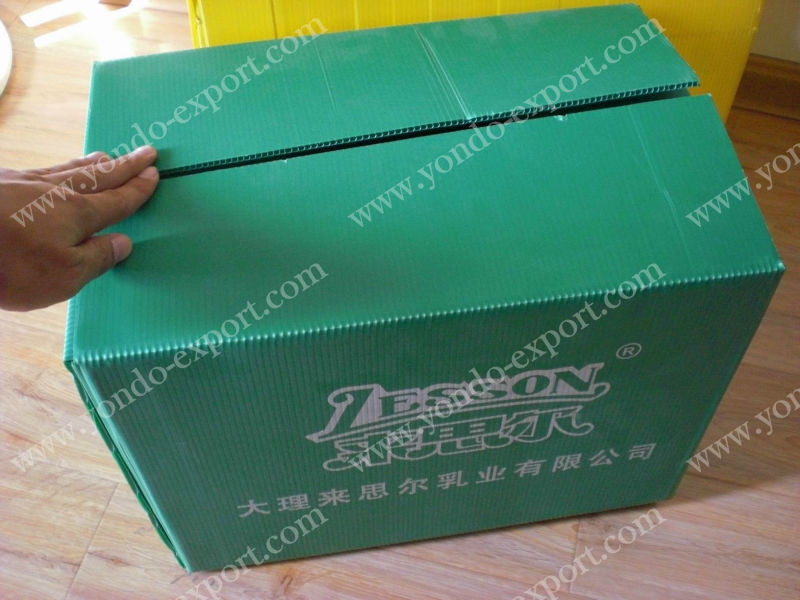 Eco-friendly pp corrugated vegetable box