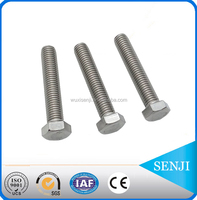 china made High Tensile Fastener nut and bolt, types of 16mm bolt