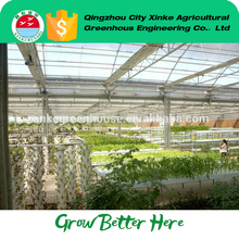 wholesale cheap Vertical Venlo green house from China famous supplier