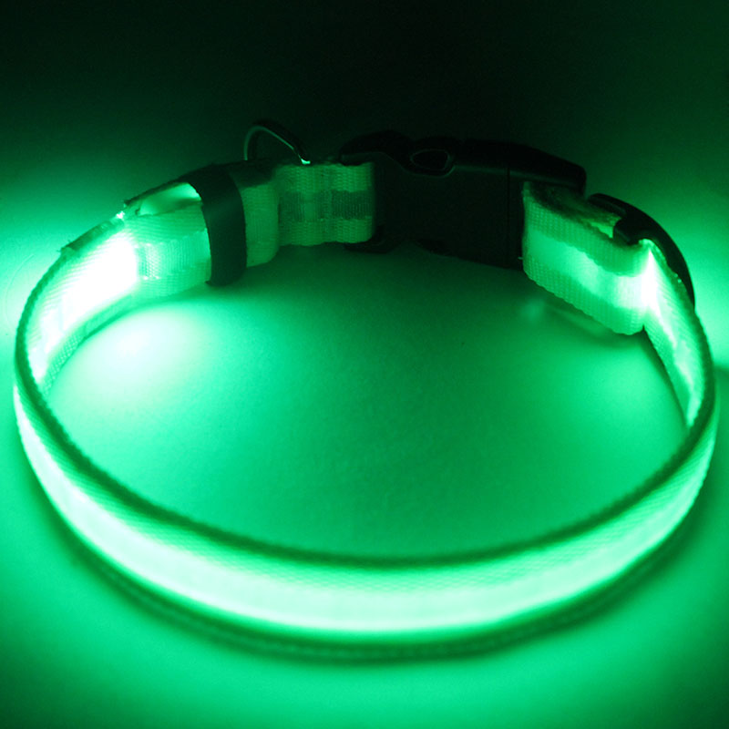 New style led dog collar dog leashes sex dog for china supplier