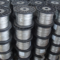 Wire Steel 1x19 Stainless Steel Wire Rope Price