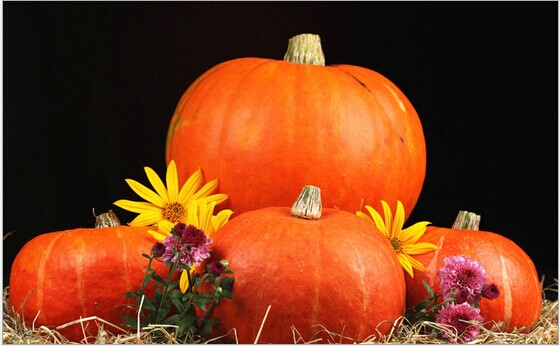 Artificial foam pumpkins for Halloween to decorate