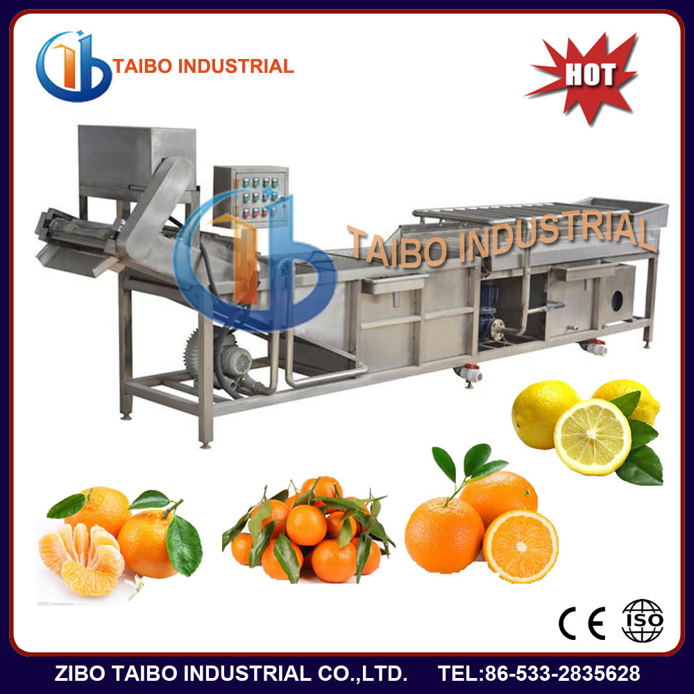 high efficency water bubble vegetable and fruit washer,pear/peach/strawberry/date/grape/blackberry/lemon bubble washing machine