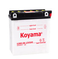 BEST on sale! 12N5-3B-12V5AH Dry Charged motorbike battery