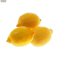 Chinese wholesale Grade A delicious low price of lemon