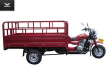 Hot popular cargo tricycle 200cc for sale
