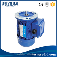 Electric Water Pump Motor Winding For Machinery Equipment