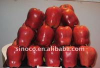 Sell Fresh Red Apple (Huaniu)