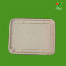 "SGS disposable biodegradable 7"" paper pulp dish and plate"