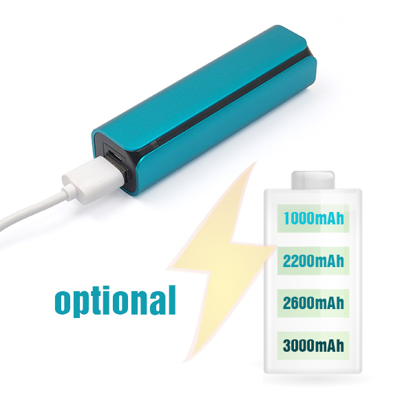 Shenzhen Manufacturer Mobile Portable Charger Cell Phone Accessories Power Bank 2600mAh
