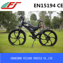 FUJIANG electric bicycle with zoom electric bicycle part