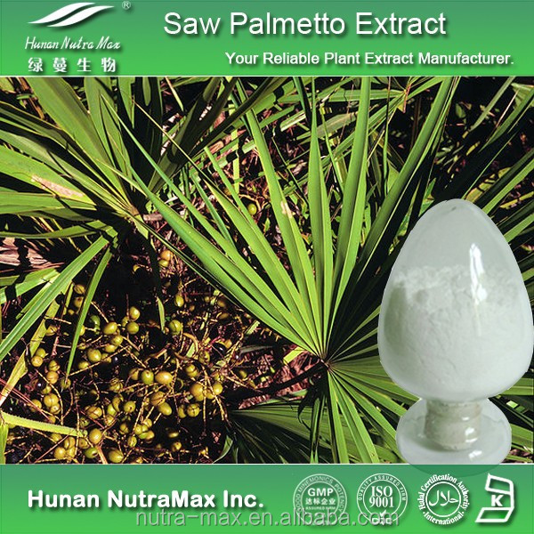 25% Fatty Acid Serenoa repens Powder Extract, Serenoa repens Powder, Saw Palmetto P.E.