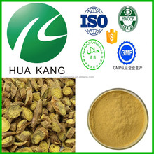 Anti-inflammation Scutellaria Baicalensis Extract Baicalin 20%,radix scutellariae extract,organic radix scutellariae powder