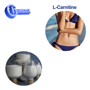 CAS NO. 541-15-1 2018 New product l carnitine powder