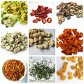 Health air dried without any additive natural mixed FD dried vegetables