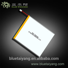 3896130 Professional lithium-ion battery 12v 100ah with CE certificate