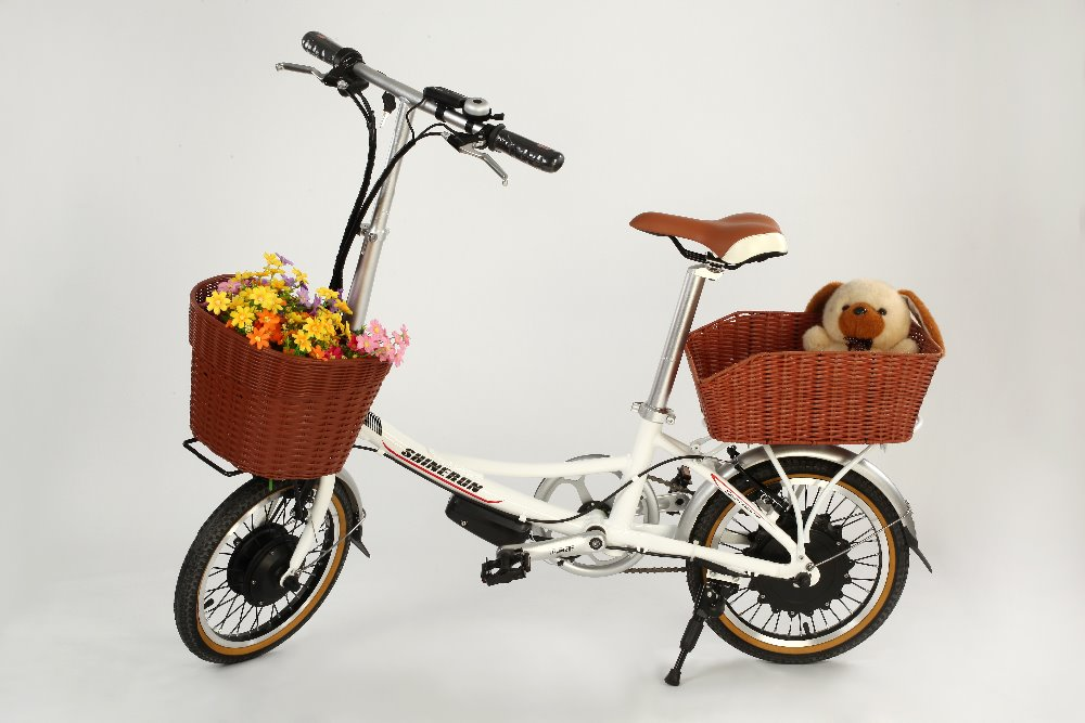 Electric bicycle RY 36v electric bicycle battery electric bicycle price Utility vehicle