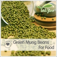 Low price green mung bean China,moong dal price