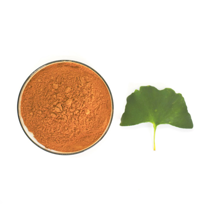 Nutritional supplements ginkgo biloba leaves extract medicine