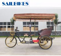 Gorgeous electric passenger auto rickshaw