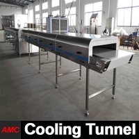 Quick Changeover Timeless Design chicken cube compactor machine Cooling Tunnel