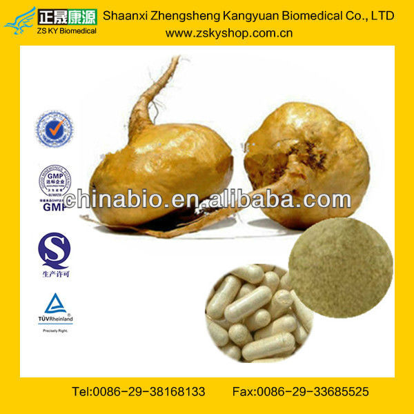 Maca Extract 4:1 from GMP Certified Manufacturer