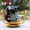 BISON(CHINA)High Frequency Electric Honda Concrete Vibrator