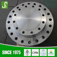 2015 China Most Popular ANSI Standard Carbon Steel Blind Flange