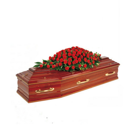 Funeral Equipment Wooden Caskets Coffin Caskets Td--E33