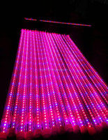 2015 Energy saving t8 led grow light tube / Solarcupid led tube light manufacturer