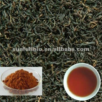 Black Tea Extract 40% Theaflavins(HPLC)