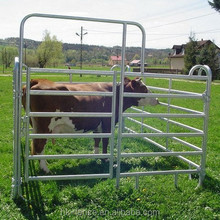 Protable galvanized pipe welded sheep panel used round pens for sheep goat yard