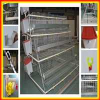 layer poultry cages/chicken layer cage/chicken egg layer cages