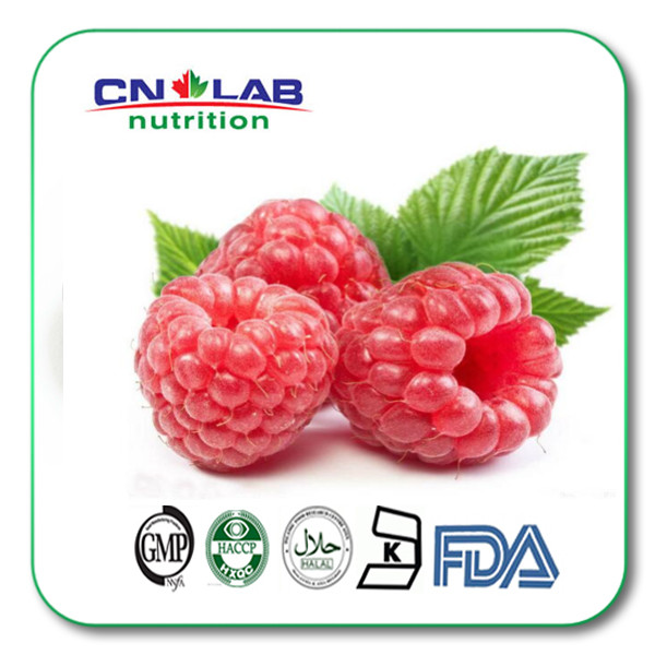 Best Quality All Natural Raspberry Ketone Supplement with Powder