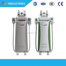 The Cryolipolysis vacuum freezing drying machine with professional designer and excellent technology for dermatologist