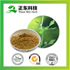 All Herb Part Used 2.5% Triterpene Glycosides Black Cohosh Extract