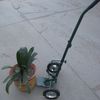 Small Two wheel garden cart