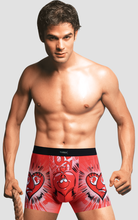 Antibacterial Copper Mens Boxer Shorts, Mens Underwear Boxers Briefs for stocks