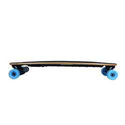 Flexible and Powerful Dual Belt Drive Electric Skateboard with USB Interface