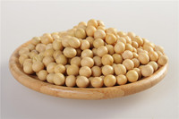 5.5-8.5mm dried soybean from china for export